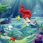 4-463 - Ariel (1)