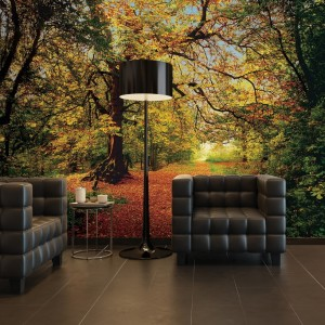 8-068 - Autumn Forest Room Set