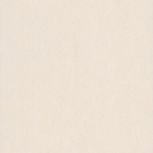 fd58484 Shimmer