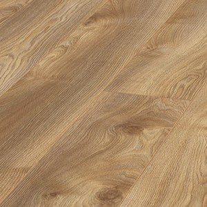 marco oak nature