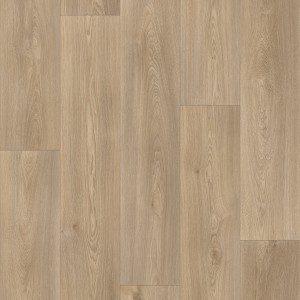 Warm Oak 613M